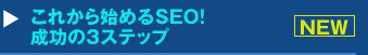 『これから始めるSEO! 成功の3ステップ』セミナー